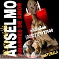 AMARRES DE AMOR  DEL BRUJO ANSELMO (00502) 33427540