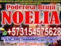 HECHIZOS Y RITUALES DE ALTO PODER PARA DOMINAR A TU PAREJA 3154575628 MAESTRA NOELIA