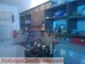 Vendo casa ubicada en belloto norte cuenta con 2 dormitorios,baño,living,comedor,cocina,