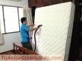 Limpieza de colchones, alfombras, tapices de vehículos y hogar