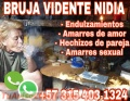 BRUJA NIDIA REALIZO TRABAJOS DE ALTO PODER CON RESULTADOS GARANTIZADOS +57 3154031324
