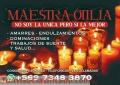SE ACERCA NAVIDAD PASALO AL LADo DE TU PAREJA...AMARRES GARANTIZADOS +57973483870