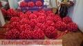 monos-rosetones-decorativos-para-auto-de-novios-7402-1.jpg