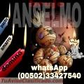 BRUJO ANSELMO, REZOS Y CONJUROS DE AMOR  (00502)  33427540